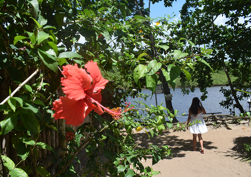 Caraíva: Simplicidade e natureza em todos os cantinhos da vila.